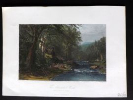 Picturesque America 1873 Hand Col Print. Adirondack Woods, New York